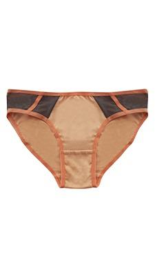 Cotton Low Waist Bikini With Powernet Panels