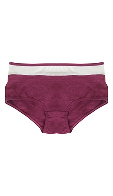 Cotton Mid Waist Hipster With Powernet Panel