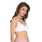 Light Padded Wirefree T-Shirt Bra - White