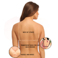 Cotton Padded Wirefree Bra With Detachable Straps & Transparent Back Band - Beige