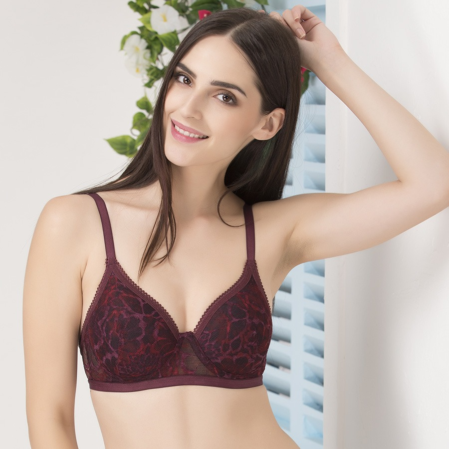 Buy Underwired Demi Cup Push-Up Lace Bra Online India, Best Prices ...